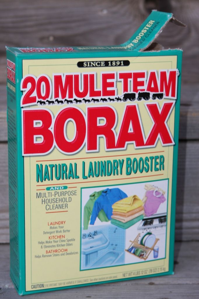 Cleaning toilets-  Getting rid of ants- Cleaning my tile floors-   As a laundry booster-Borax on the  mattresses Cleaning the garbage can- I poured about 1/4 cup of borax into the garbage can .  Cleaning floor boards- more