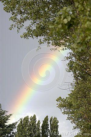 Arco Iris - Descarga De Over 35 Millones de fotos de alta calidad e imágenes Vectores% ee%. Inscríbete GRATIS hoy. Imagen: 29248137