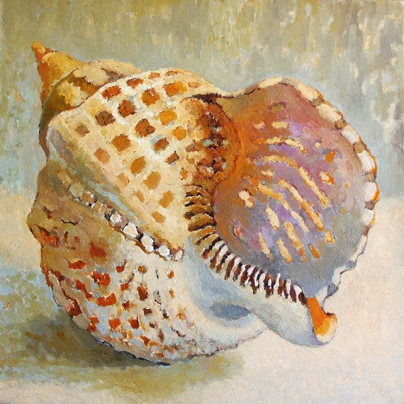 """The shell""  Painting - Still life - Bright - Interior - Color - Original Oil Painting - Sea - Contemporary Art - Oil   50x50 cm (19.7x19.7 inches), 2010"