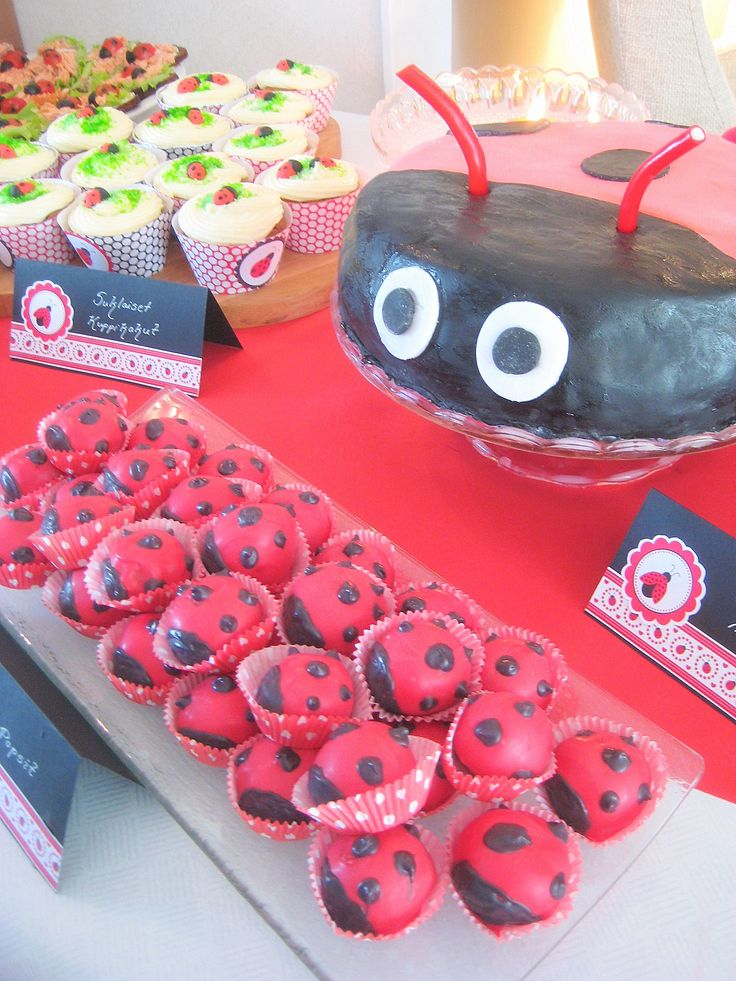 Ladybug cake, cupcakes, biscuits