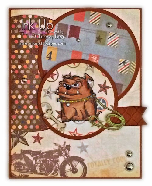Bulldog Stare Birthday Card: Mini Crazy Cats & Dogs