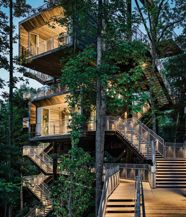 Sustainable treehouse in Seattle built as an educational center for Boy Scouts, USA. Mithun Architects