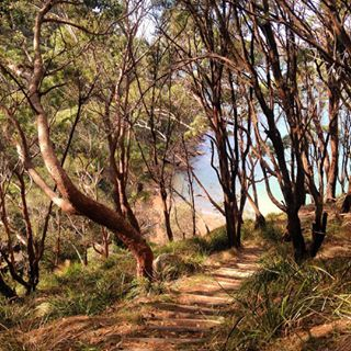 Ku-ring-gai Chase National Park, North Sydney | 18 Magical Places You Won't Believe Are Actually In Sydney
