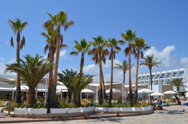 Palladium White Ibiza