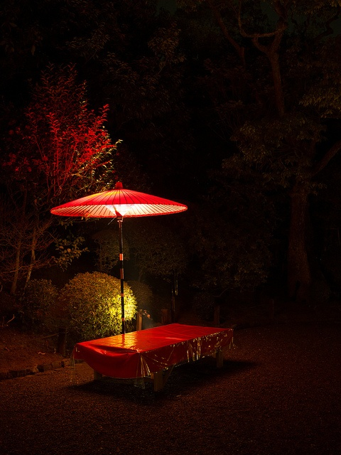 Red Bench in the Dark-- Chion-in Temple, Kyoto