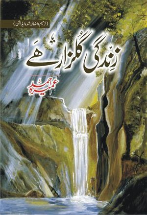 42 best books i want to read 03330911000 images on pinterest book zindagi gulzar hai urdu novel by umera ahmed fandeluxe Images