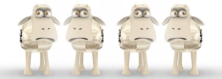 Worried sheep!