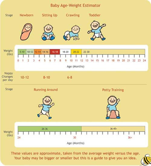 Baby weight chart - General guidelines only, but interesting to see how fast they can grow!