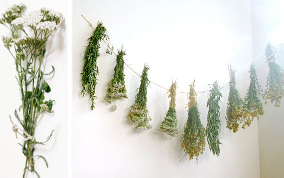 How-to on drying and using herbs. Thanks, Etsy!: Herbal Remedies, Dry Herbs For Teas, Decor Inspiration, Herbs Gardens, Make Teas Dry, Herbal Teas Gardens, Herbal Decor, Herbalist Gardens, Bananas Stuffed