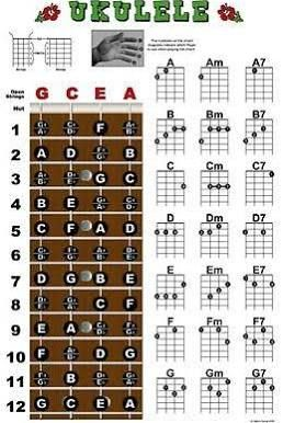 cheap ukulele - Google Search
