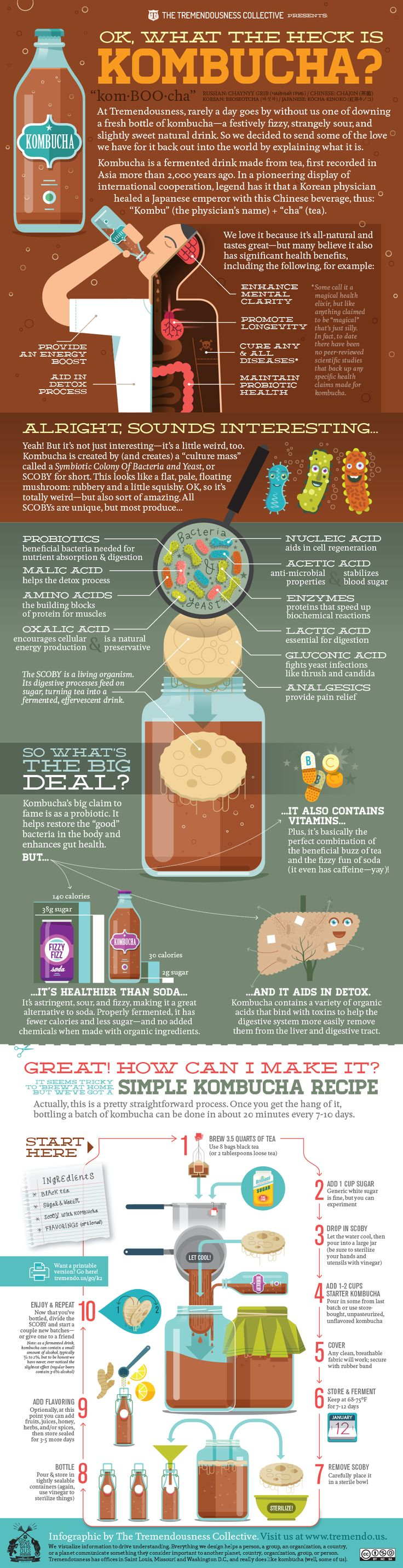 "An eyebrow raises skeptically...  ""What. Are. You. Drinking?""  Kombucha!  It's fizzy and a bit sour, but I find it very tasty. And we made this infographic to help you learn more about it.  ..."