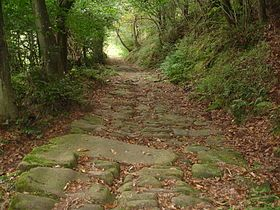 Calzada romana del valle del Besaya -Calzada romana que unía Legio VII Gemina (León) con Portus Blendium (Suances) —en la costa cantábrica— a su paso por el Valle del Besaya.-  Wikipedia, la enciclopedia libre