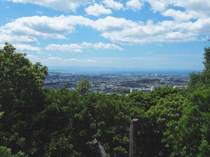 北山国有林から大阪方面を臨む