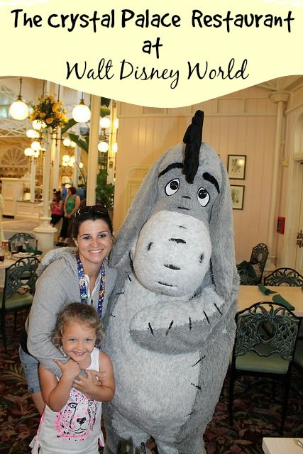 Disney Dining Tips. Inside The Crystal Palace Restaurant at Walt Disney World and is it worth the money?