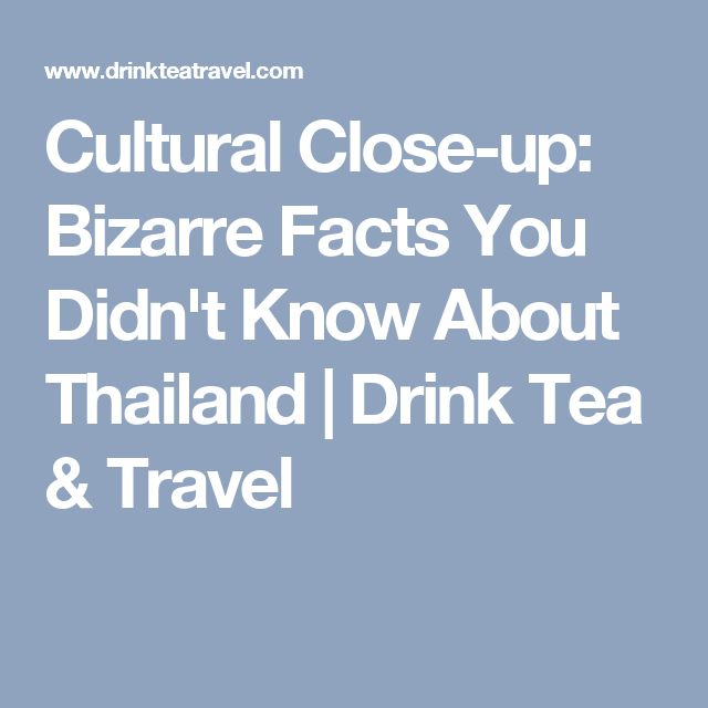 Cultural Close-up: Bizarre Facts You Didn't Know About Thailand | Drink Tea & Travel