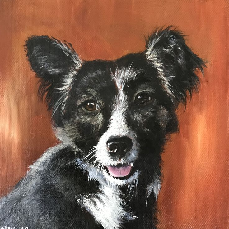 Pippin - acrylic on canvas by Nicola Wilkinson