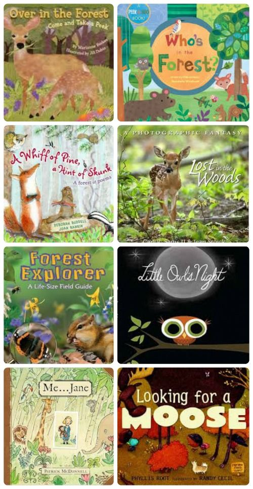Gorgeous books about forest animals -- perfect for a forest or woodland unit!  http://www.kcedventures.com/blog/kids-books-about-forest-animals-and-wildlife