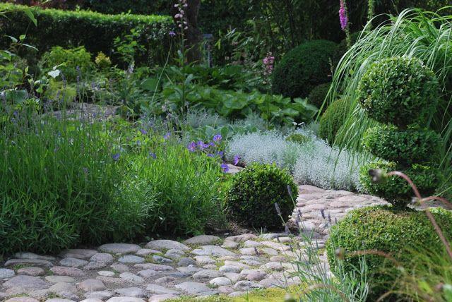Lavendel buxbom silver kullersten