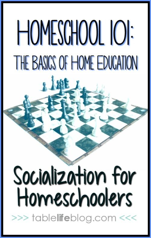 the socialization of a homeschooler When it comes to homeschool socialization, teachers get a lot wrong i should  know - i used to be one here's the truth according to a.