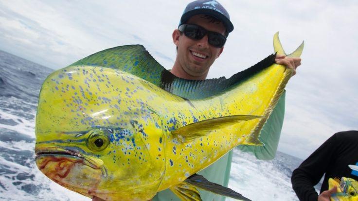 Морская рыбалка в Майами