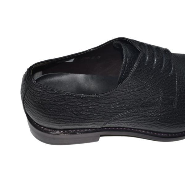 Кожа акулы обувь