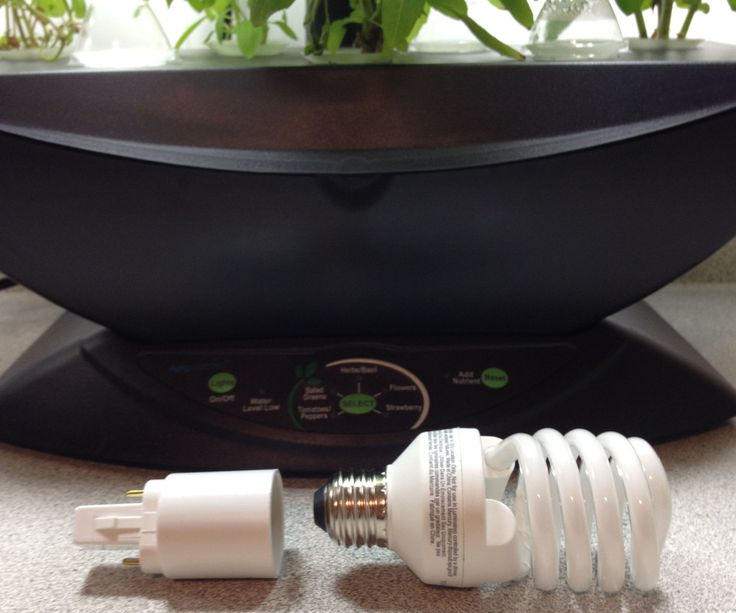 How to use regular CFL bulbs in your Aerogarden using cheap growing light adapters (2.50$ for a pair)
