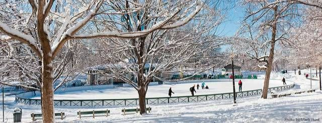 Winter Wonderland: Outdoor Skating Rinks Around the Boston Area