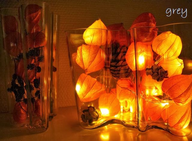 Physalis alkekengi and led lights