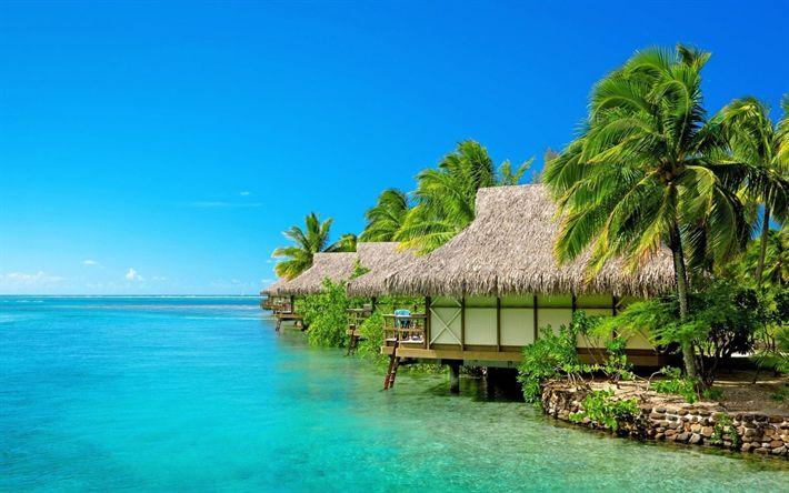 Descargar fondos de pantalla Maldivas, islas Tropicales, la playa, las palmeras, los viajes, el descanso, el verano, el trópico