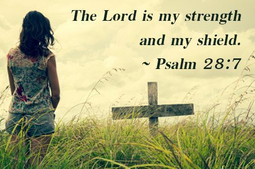 The Lord is my strength and my shield.  Psalm 28:7