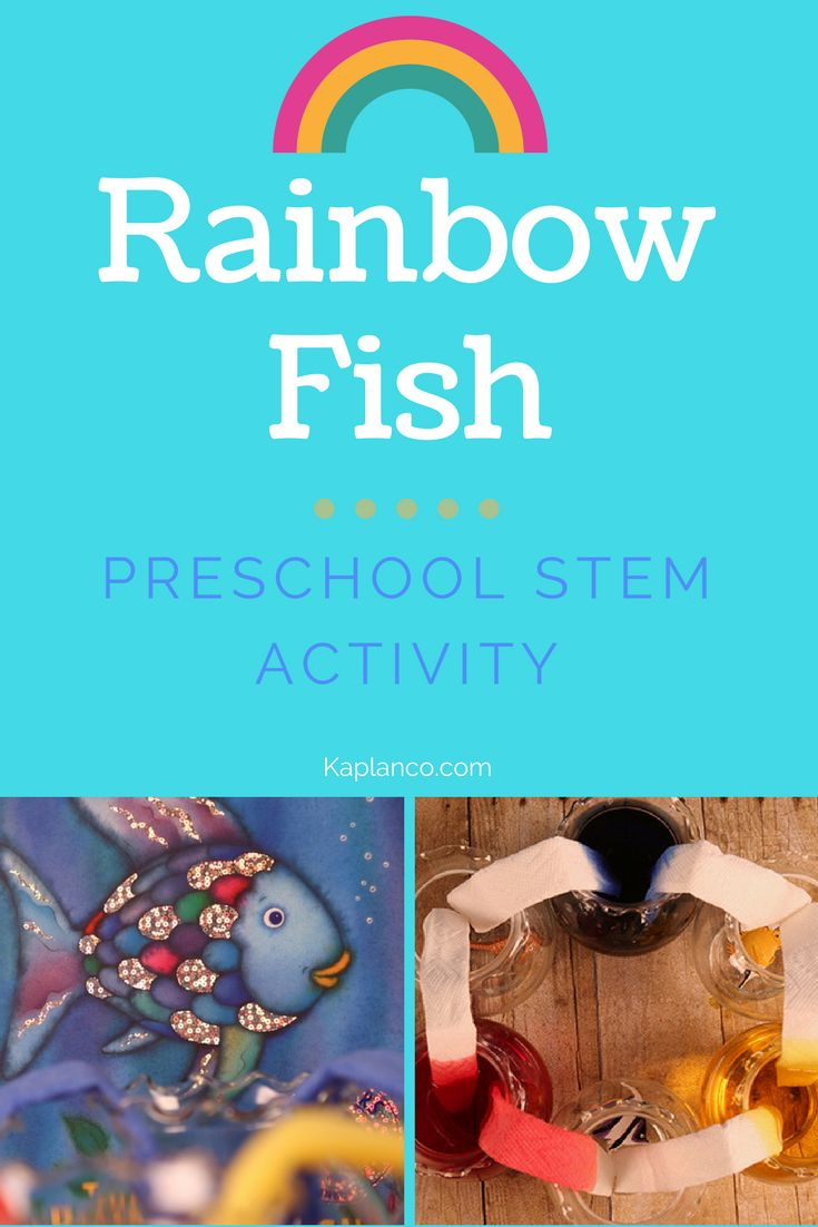 best 25  rainbow fish activities ideas on pinterest