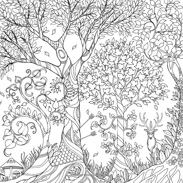 enchanted forest an inky quest coloring book johanna basford 6063887956574 amazon - Johanna Basford Coloring Book