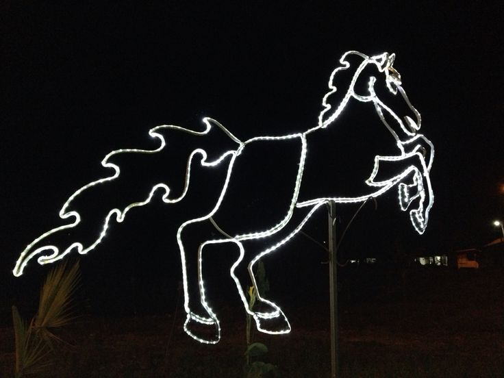Lamp of horse  #horse