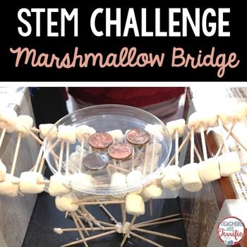 STEM Challenge: Build a bridge with only two supplies and test it by adding…