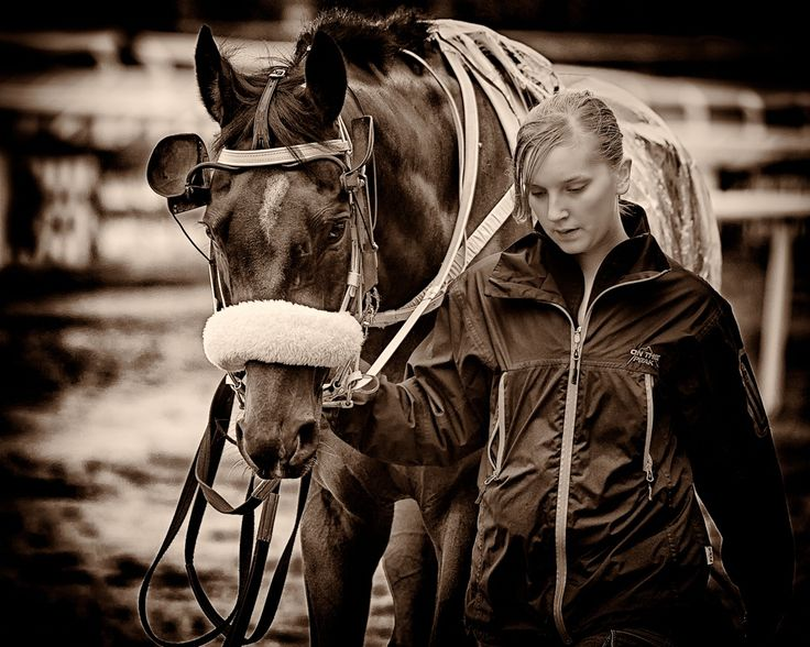 Horse Racing -Ready To Go by Anders Stangl on 500px