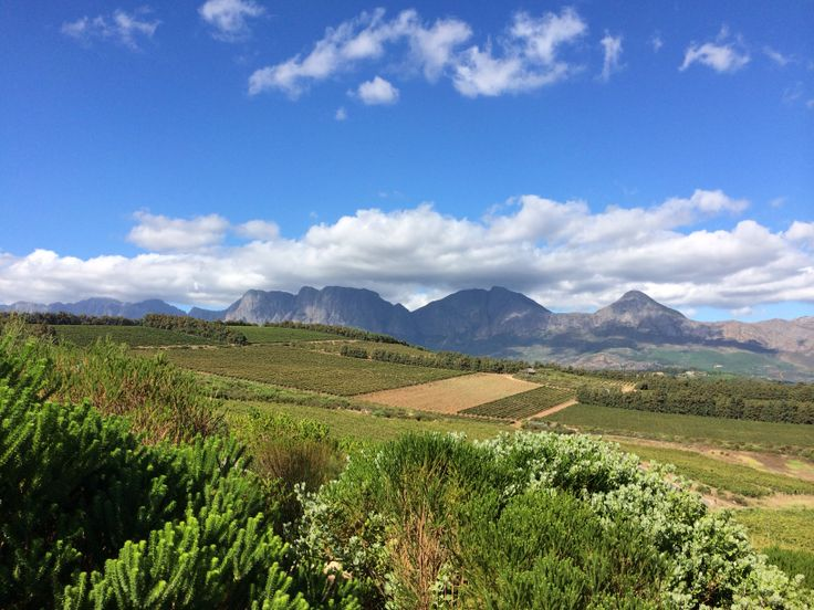 @WaterkloofWines between Somerset West & Strand, beautiful.