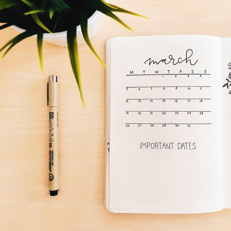 "3,052 Likes, 43 Comments - Haley ⚓︎ bullet journal (@journautical) on Instagram: ""I'm almost done planning for March, how about you? I decided to try a new layout this month for my…"""