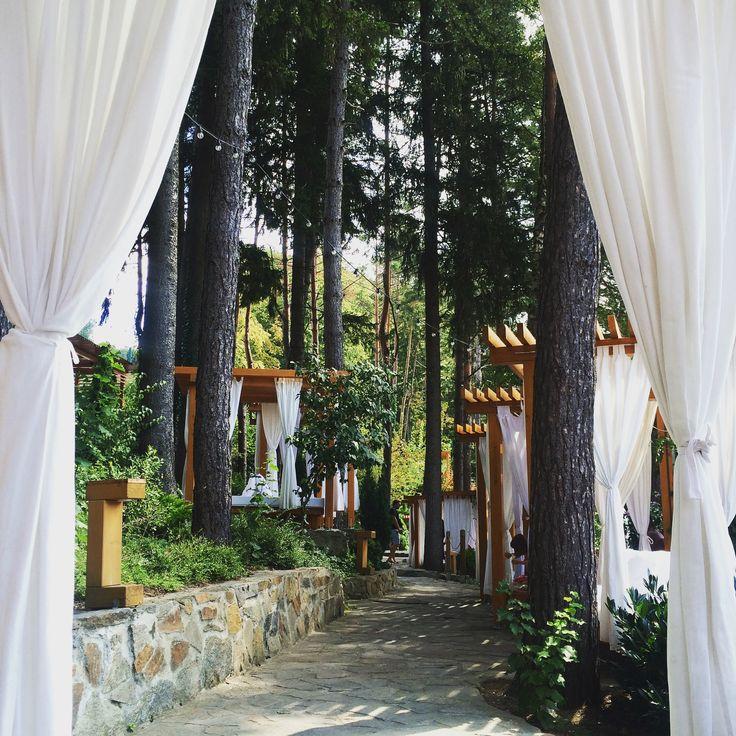 Valiug Lake, Romania