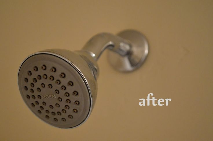 How to clean a shower head - easier than you might think! See the incredible before and after.