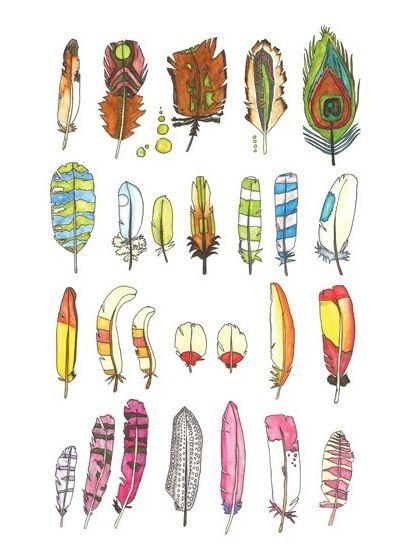 prachtige veren, stuk voor stuk. Maar toch allemaal anders. Net als mensen  #ekkomi #kindercoach http://www.pinterest.com/ekkomikndrcch/