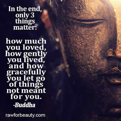 Image result for positivity quotes buddha