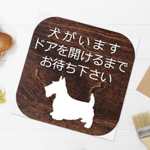 玄関ドアなどに簡単につけられる「アイコンマグネット木目」のスコティッシュテリアのデザインです。アイコンのようなデザイン、裏面全体がマグネットになっているので、玄関扉や壁に貼付けてご使用ください。4種類の木目からお選びいただけます。  http://sanbiso-store.com/?pid=115360062  #マグネットシート #愛犬 #犬 #スコティッシュテリア #玄関ドア #看板 #ダークブラウン #木目 #犬と暮らす #わんこ #お知らせ看板