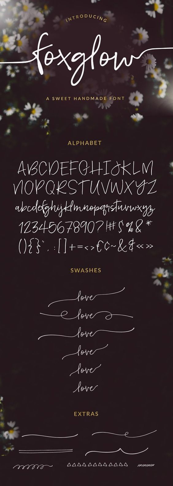 Meet Foxglow... a fun, handwritten font, complete alphabet with swashes and