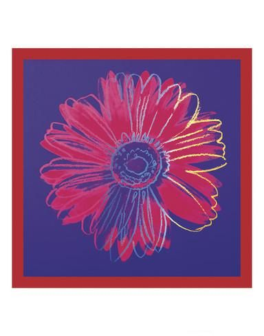 Daisy, c.1982 (blue & red) Posters by Andy Warhol - AllPosters.co.uk