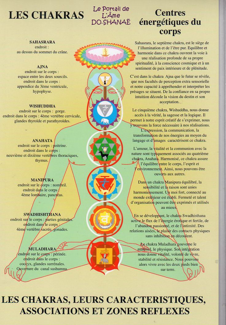Planches explicative sur les chakras / 1 Now You Can Learn To Use Your Natural Ability; To Channel Your Life-force Energy, Heal Your Family, Friends (and Yourself)... And Attain The Skills Of A Master Reiki Healer... http://pure-reikihealing.blogspot.com?prod=iA2GNyrQ