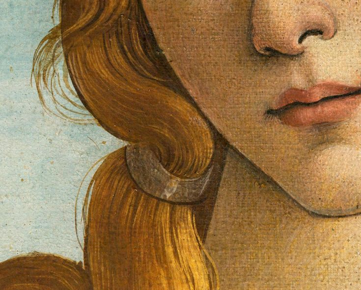 Analysis of The Birth of Venus