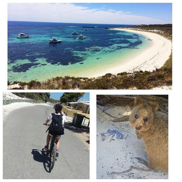 Went to Rottnest Island 気温38で死ぬほど暑くて何回も心折れたけど2時間で一周できた 途中しんどくて動けなくなってたら彼があたしの重いリュックと自転車を持ってくれたなんて優しいんだ 明日日本帰ります I'm going back to Japan tmr #rottnestisland#travel#bycicle#38#superhot#sea#beautiful#quokka#sore#mylove#dayoff#sunday by shoko1115 http://ift.tt/1L5GqLp