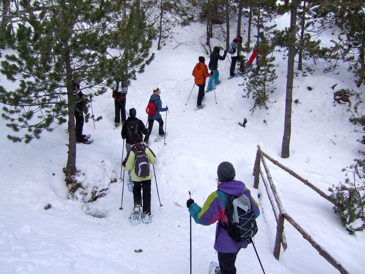Raquetes de neu a l'estació de Guils de Fontanera, la Cerdanya, Pirineu de Girona, Catalunya. www.nordicwalking-girona.blogspot.com