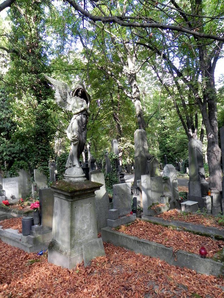 El cementerio de Olšany (en checo: Olšanské hřbitovy) es el cementerio más grande de la ciudad de Praga, capital de la República Checa. Se calcula que alcanzó un máximo de dos millones de entierros. El cementerio es particularmente conocido por sus muchos y notables monumentos modernista