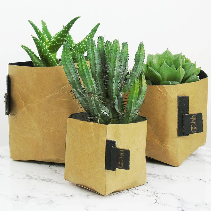 Are you interested in our scandinavian paper planter? With our brown square plant pot you need look no further.